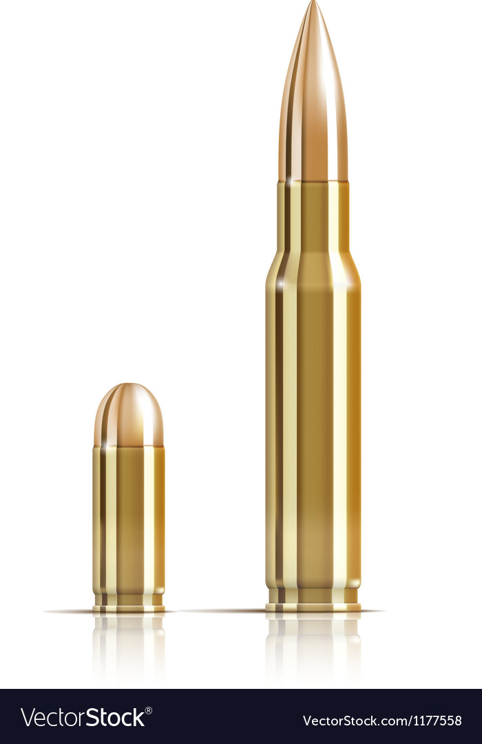 Ammunition bullets on white vector image