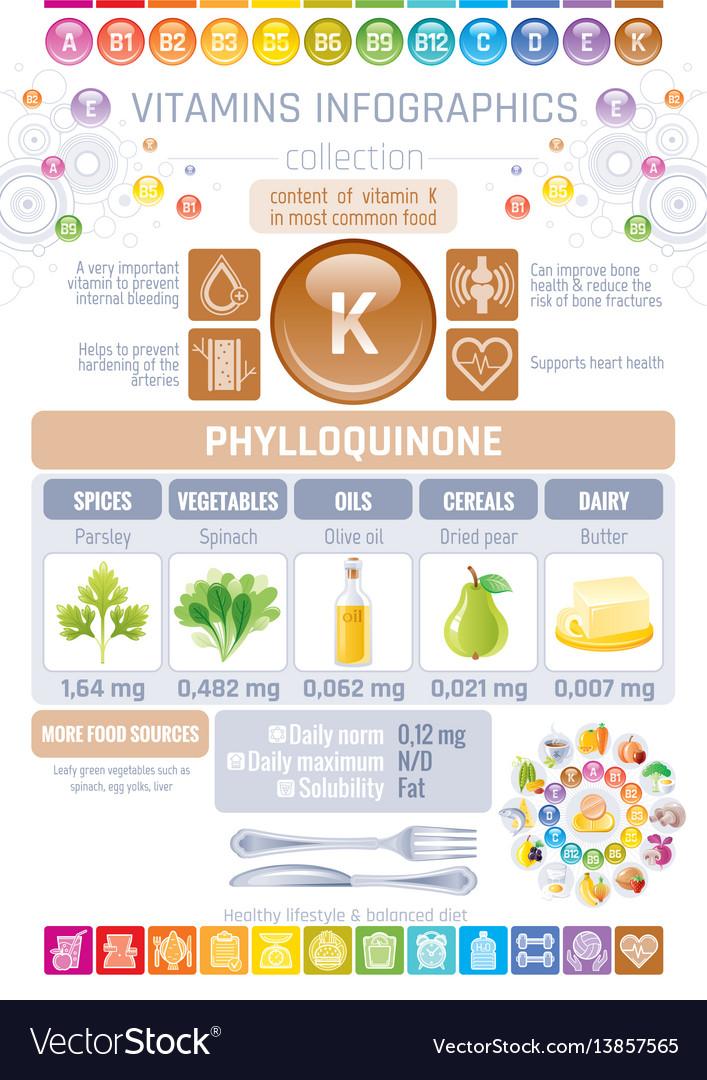 Phylloquinone vitamin k rich food icons healthy vector image