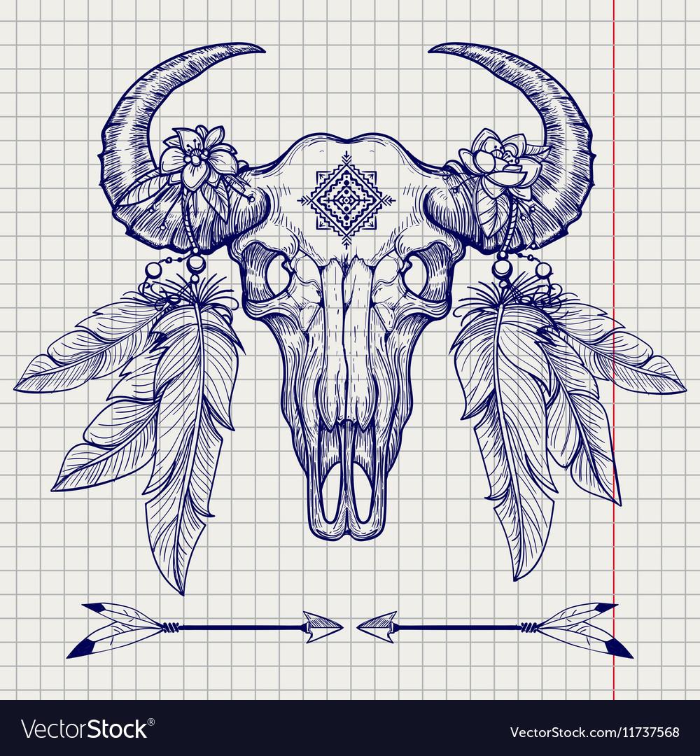 Buffalo skull ball pen sketch vector image
