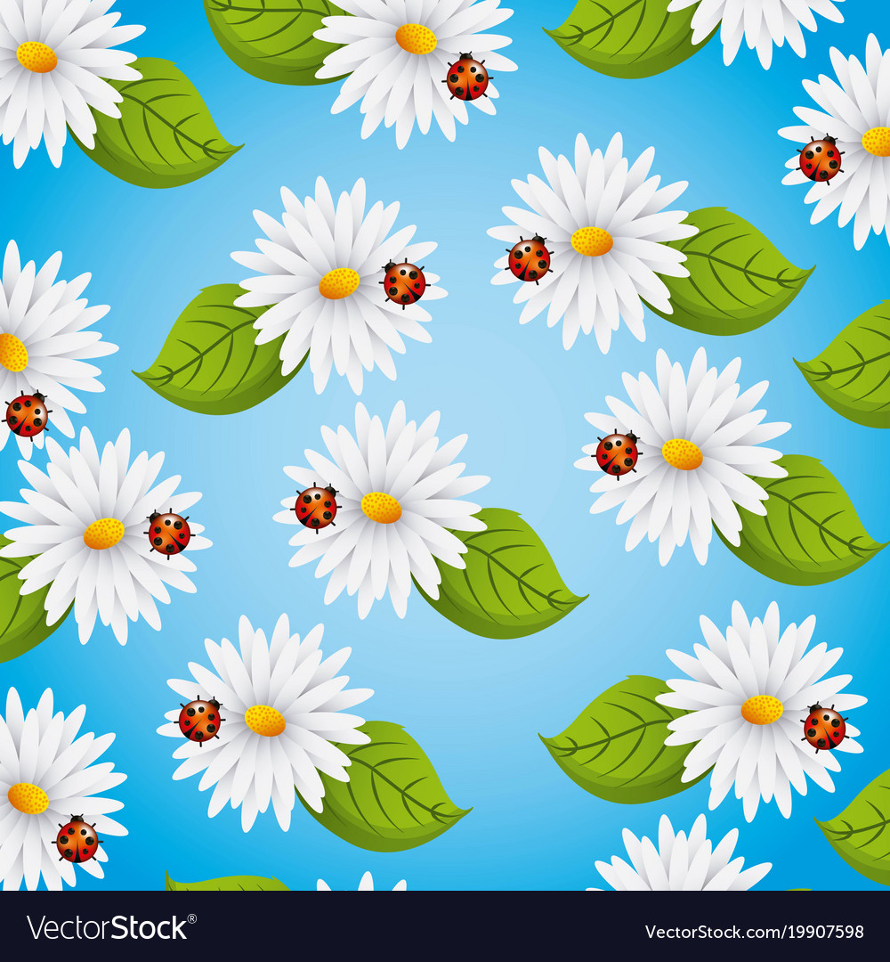 Seamless pattern daisies flowers ladybug and vector image izmirmasajfo Image collections