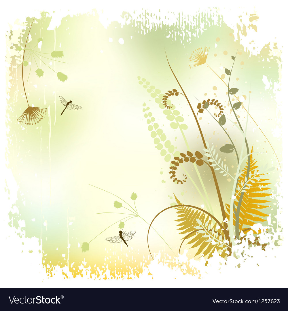 Plant background - The meadow in summer time vector image