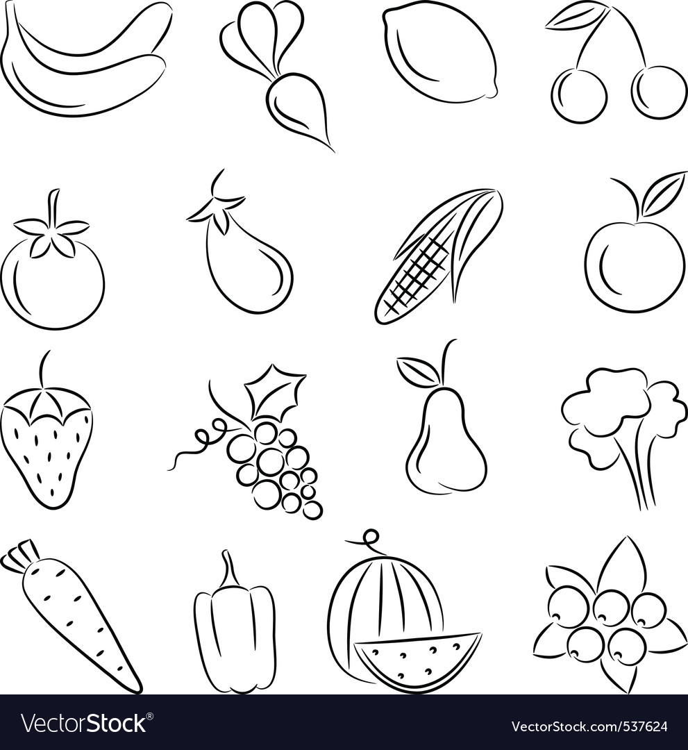 A set of sketches of food vector image