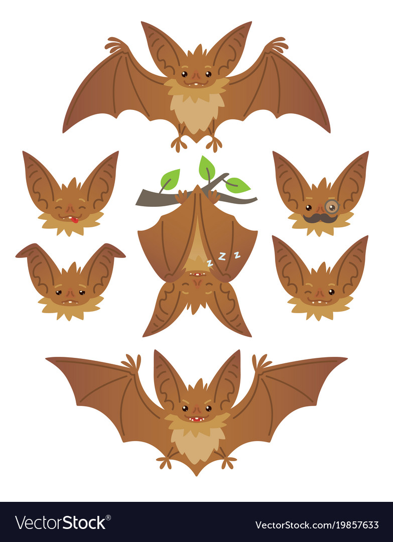 Bat in various poses flying hanging brown bat vector image