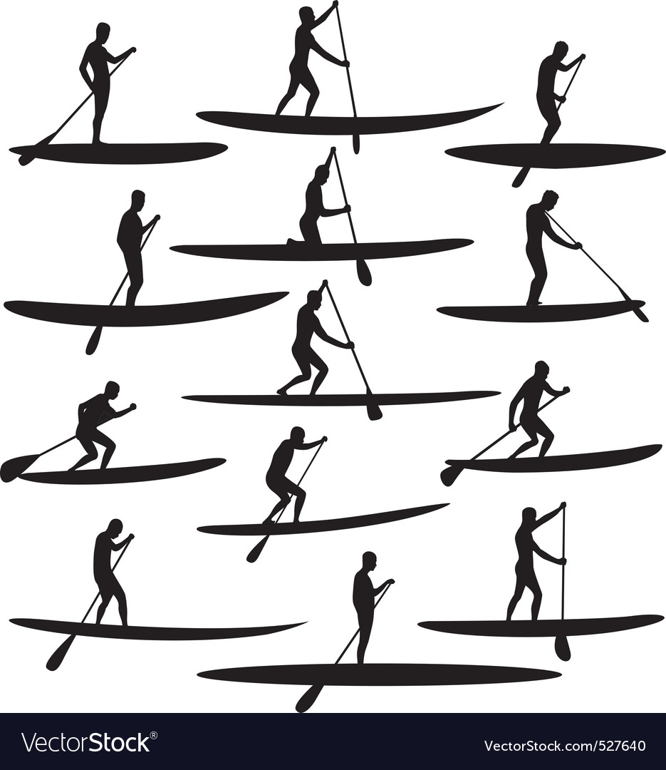 SUP Stand Up Paddle Boarding vector image