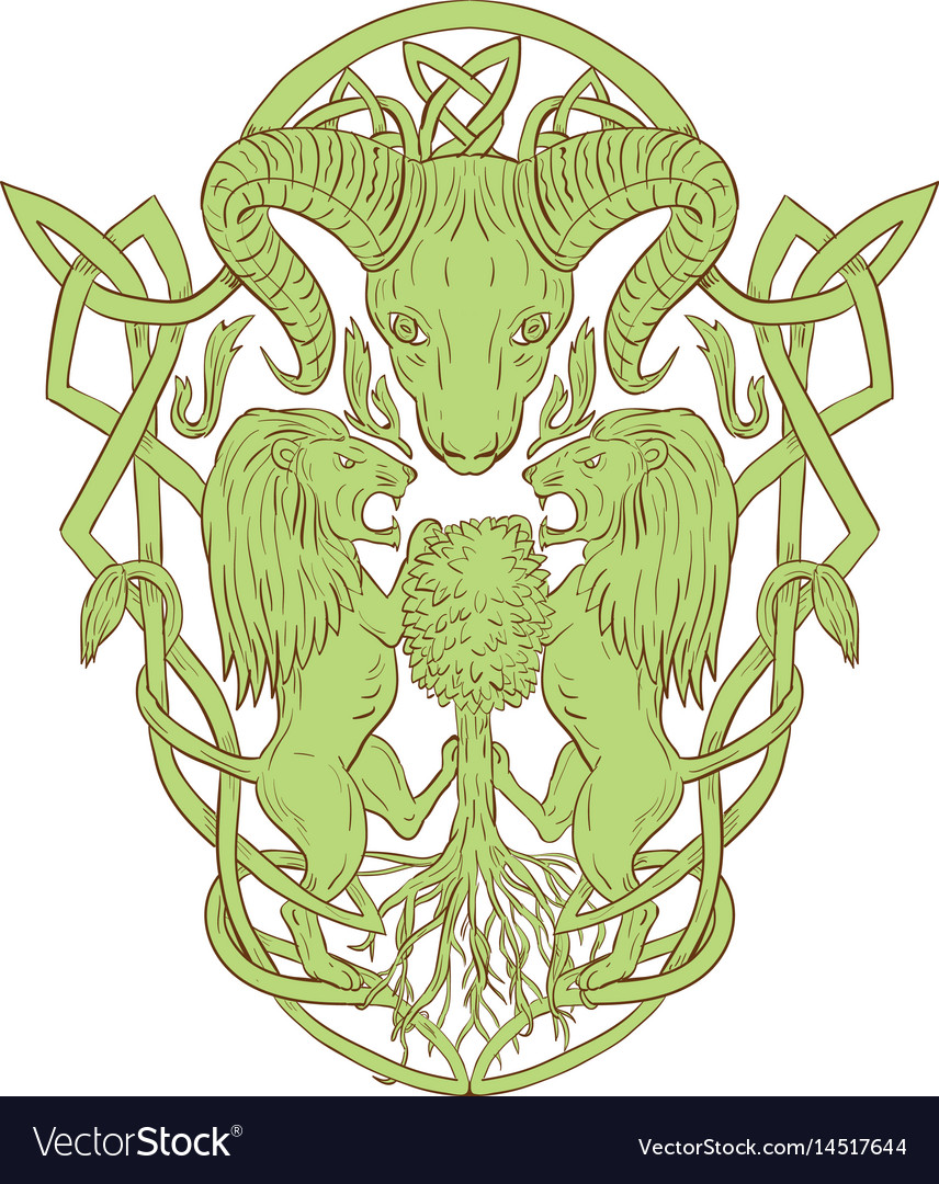 Bighorn sheep lion tree coat of arms celtic knot vector image