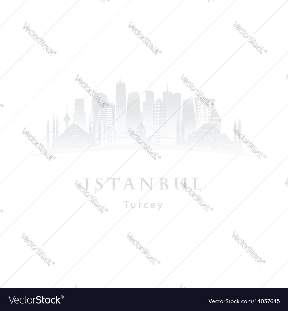 Istanbul in the mist logo vector image