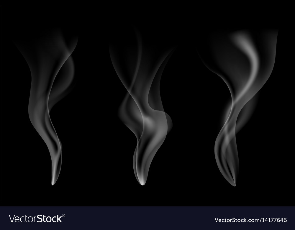 Gentle smoke flow on black vector image