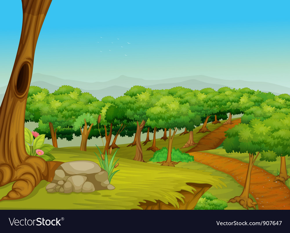 Lovely forest path vector image