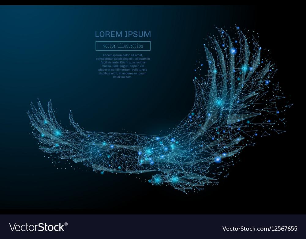 Eagle in flight blue vector image
