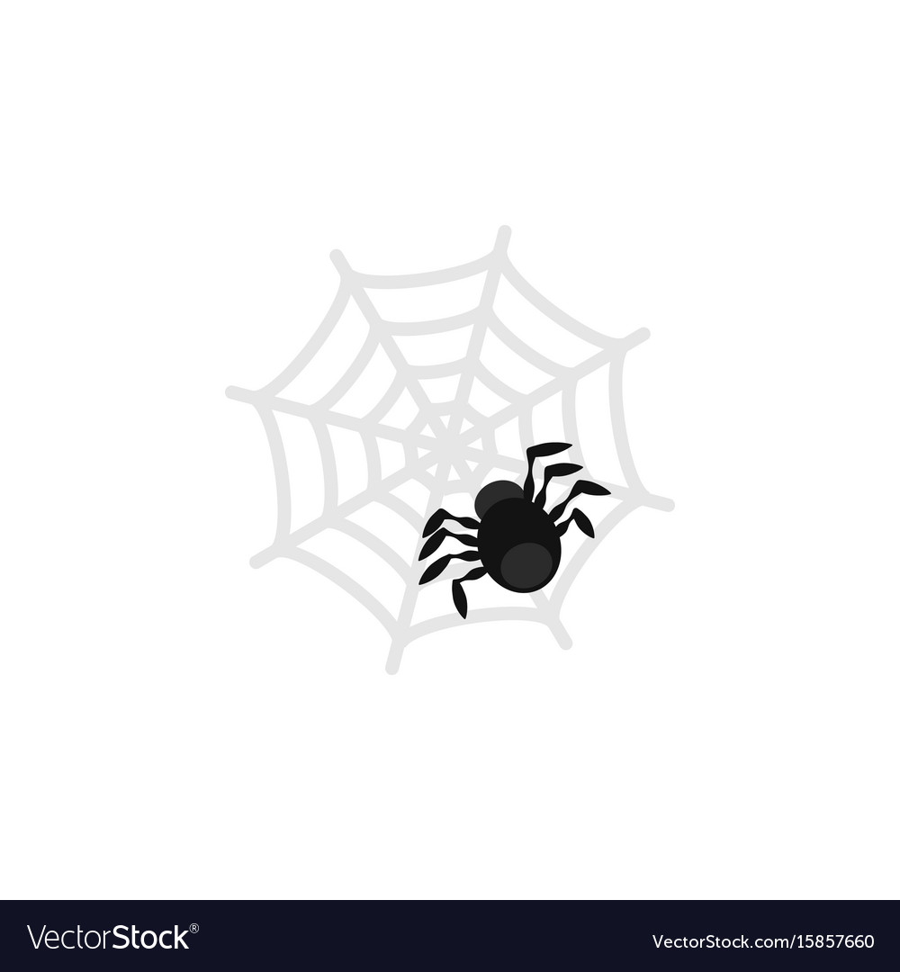 Isolated spider flat icon spinner element vector image