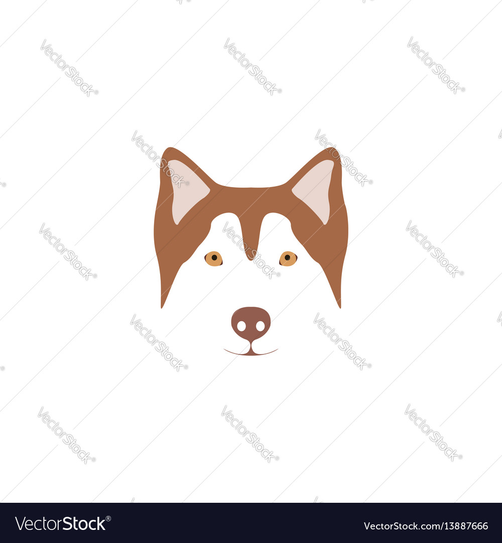 Siberian husky with orange eye vector image