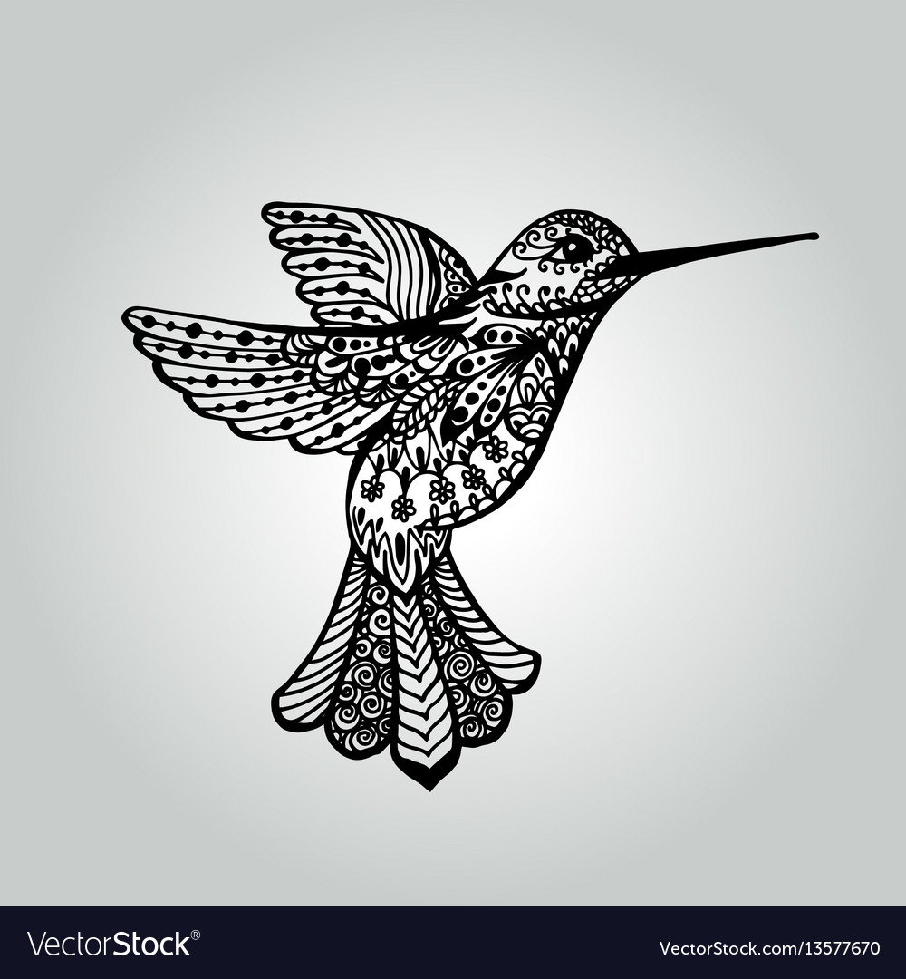 Abstract doodle humming-bird wildlife collection vector image