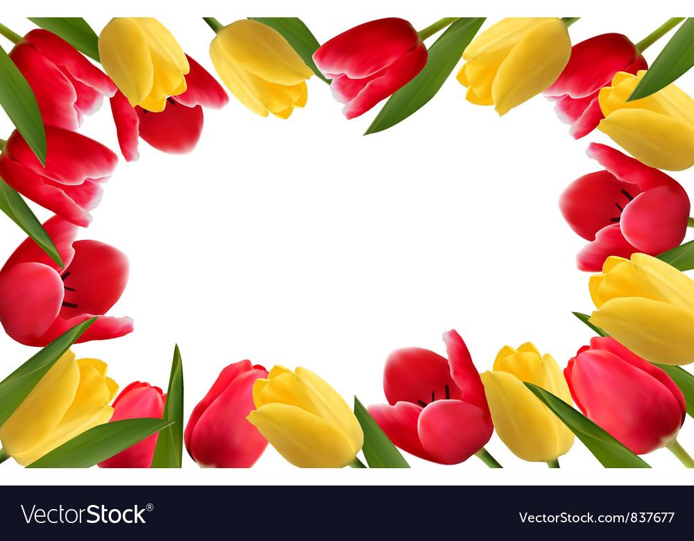 Color Spring Flower Frame Vector Image