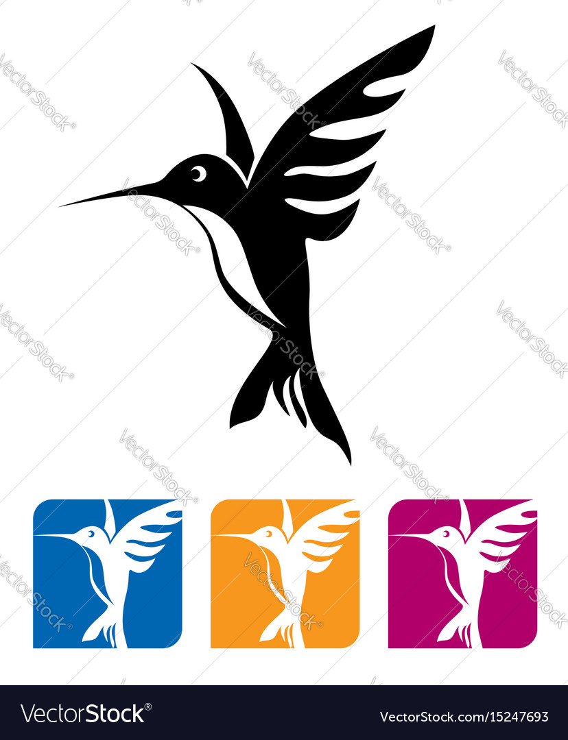 Flying hummingbird vector image