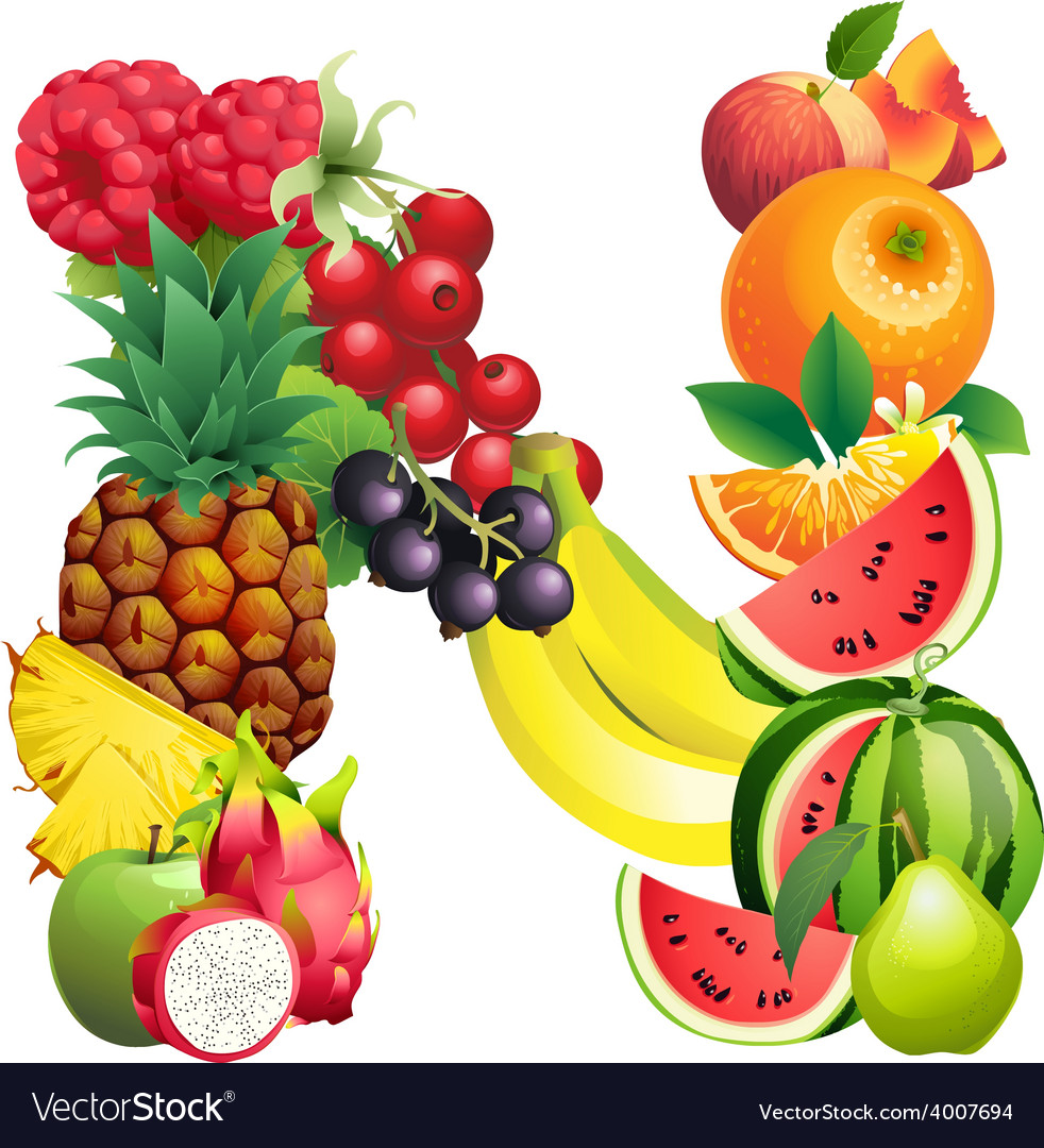 letter n composed of different fruits with leaves vector image
