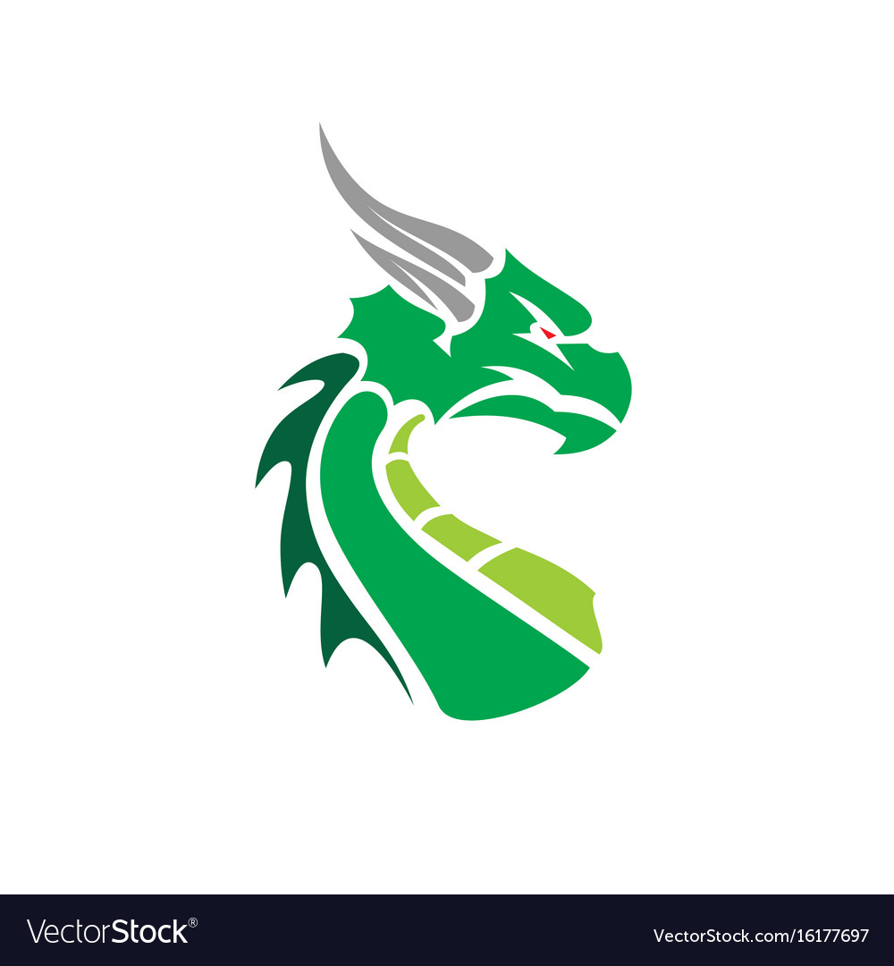 Cartoon dragon face vector image