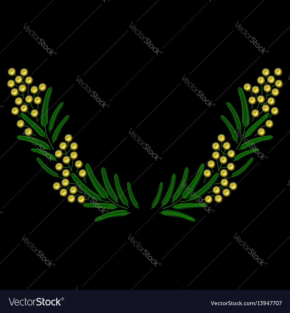 Embroidery spring blossoming mimosa branch vector image