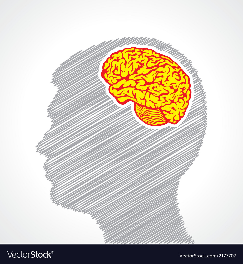 Hand drawn man s face with mind in his head vector image