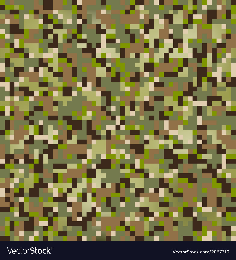 Camo pixel vector image