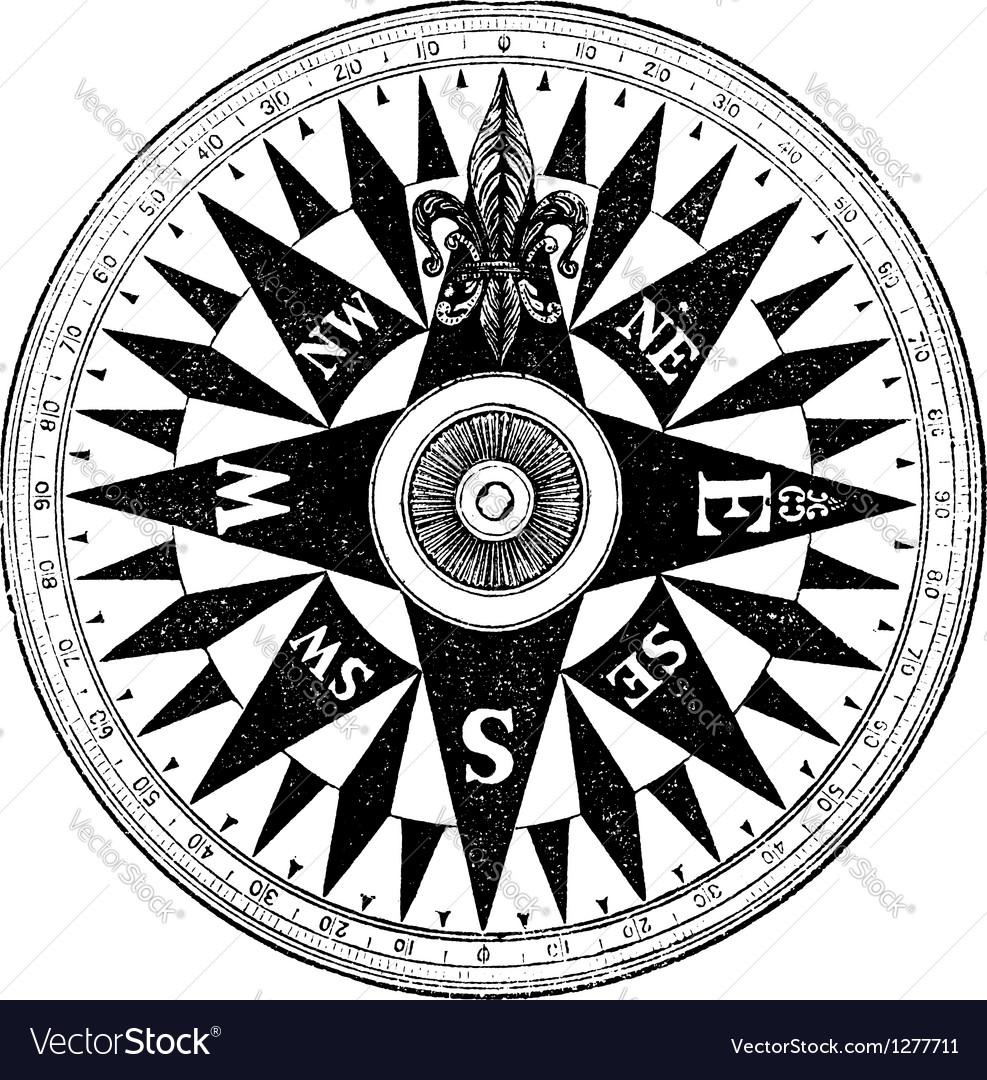 British Navy Compass vintage engraving vector image