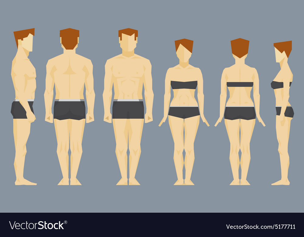 Man and woman face and profile bodies vector image