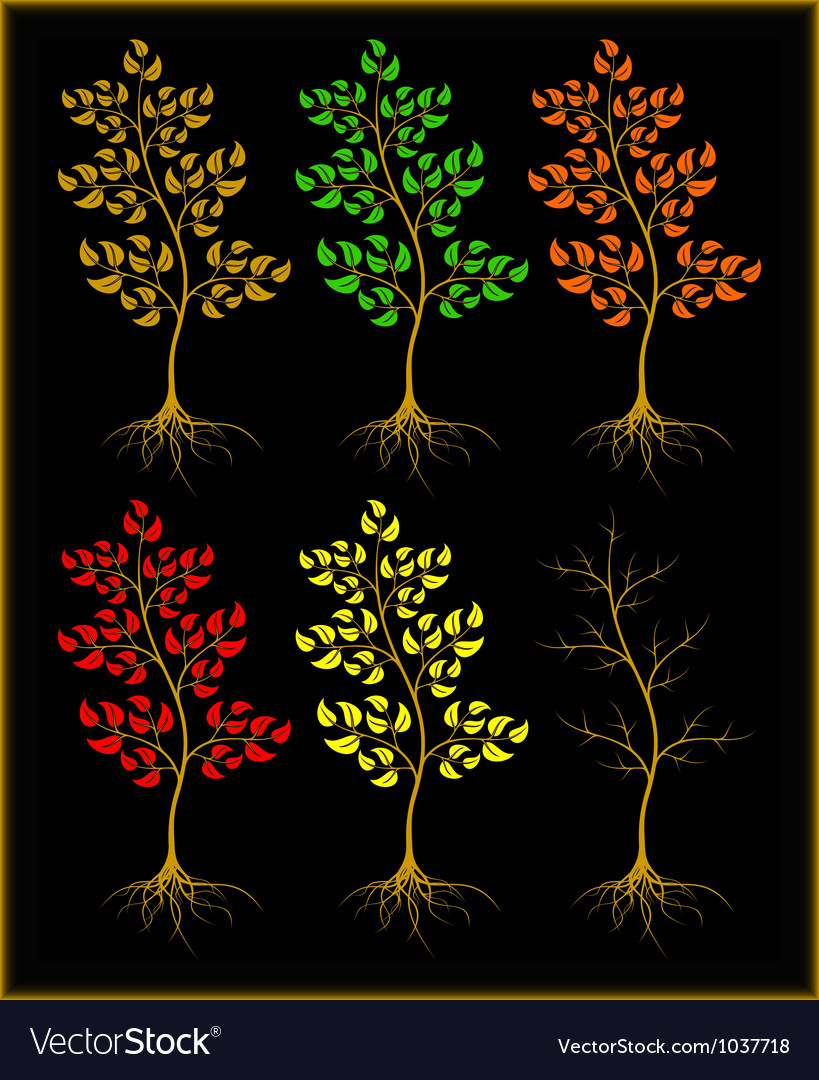 Trees on a black background vector image