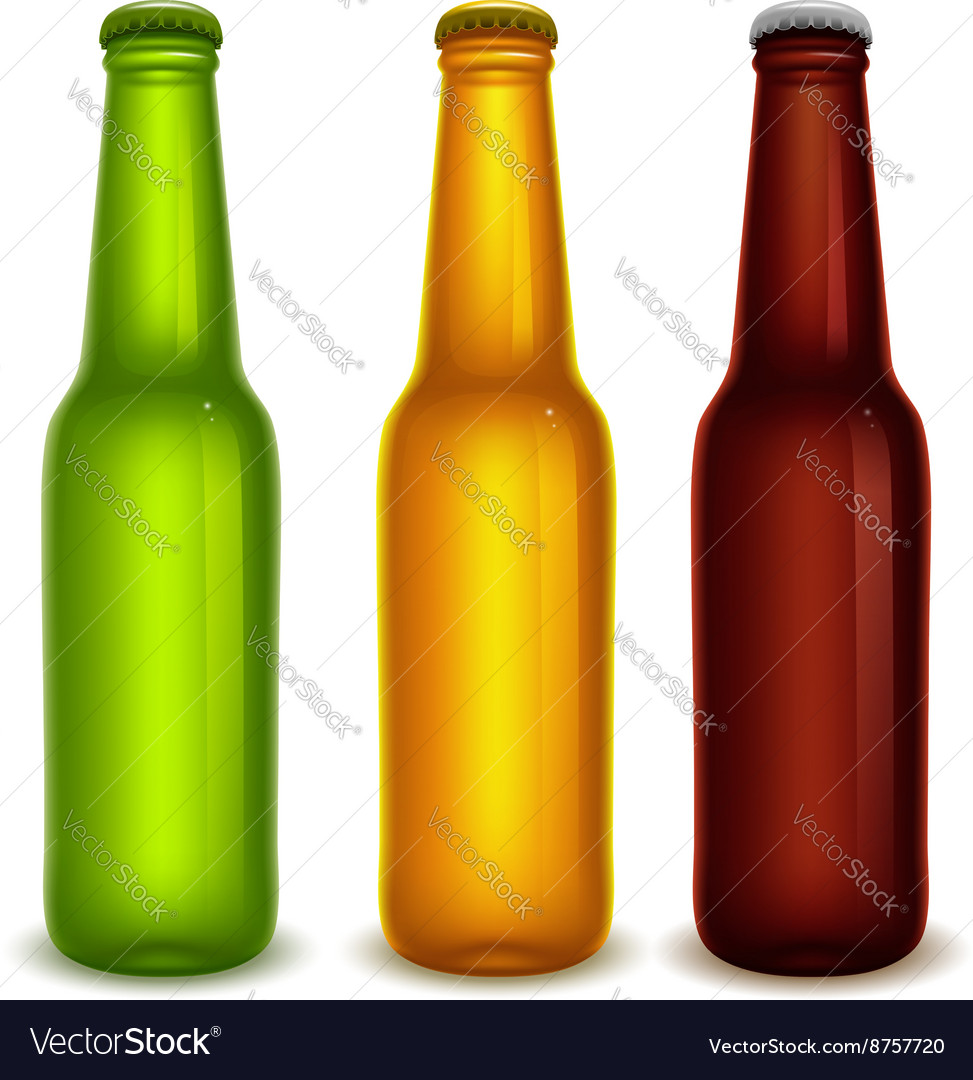 Beer bottles vector image