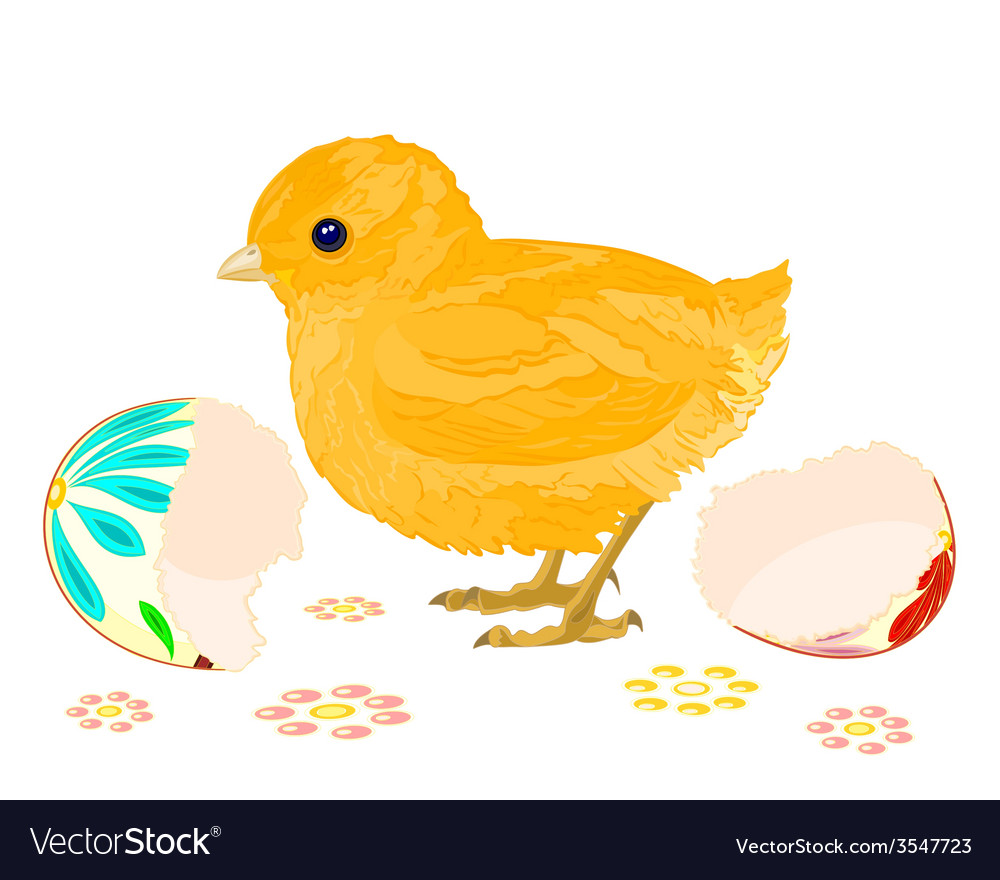 Easter chick hatched from Easter eggs vector image