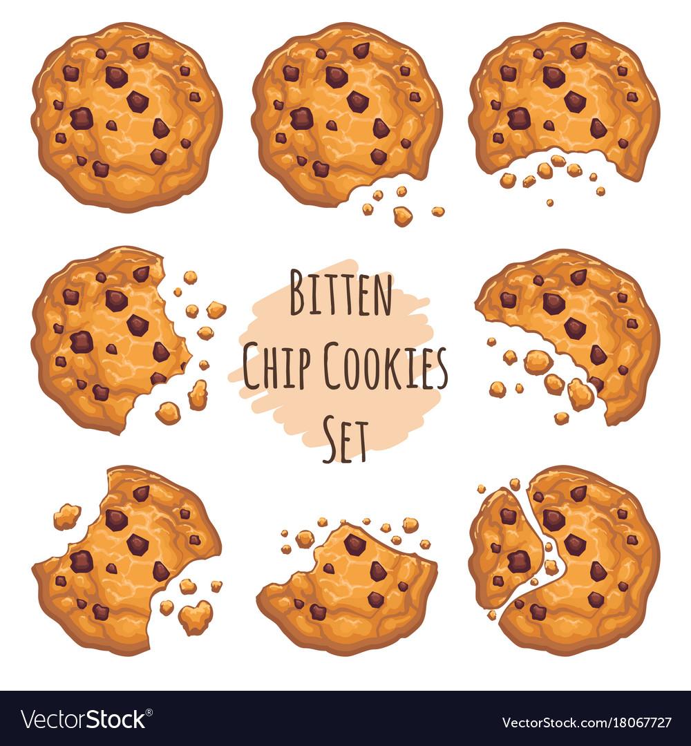 Bitten chocolate chip cookies set vector image
