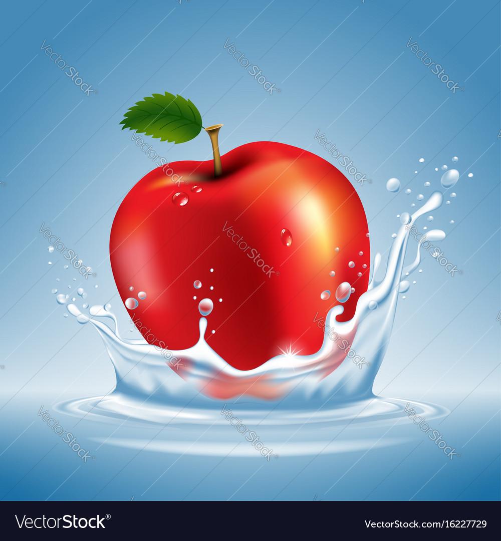Apple in water splash vector image
