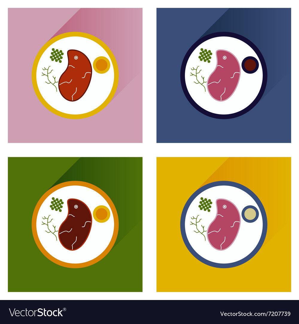 Modern flat icons with shadow steak on plate