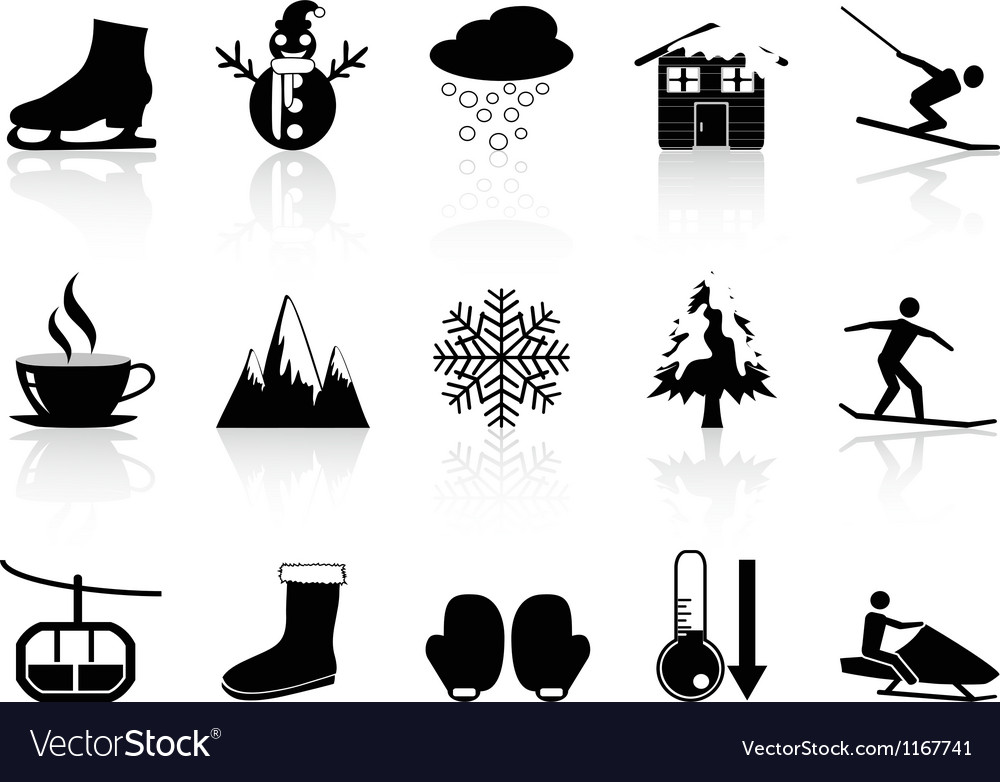 Winter icons set vector image