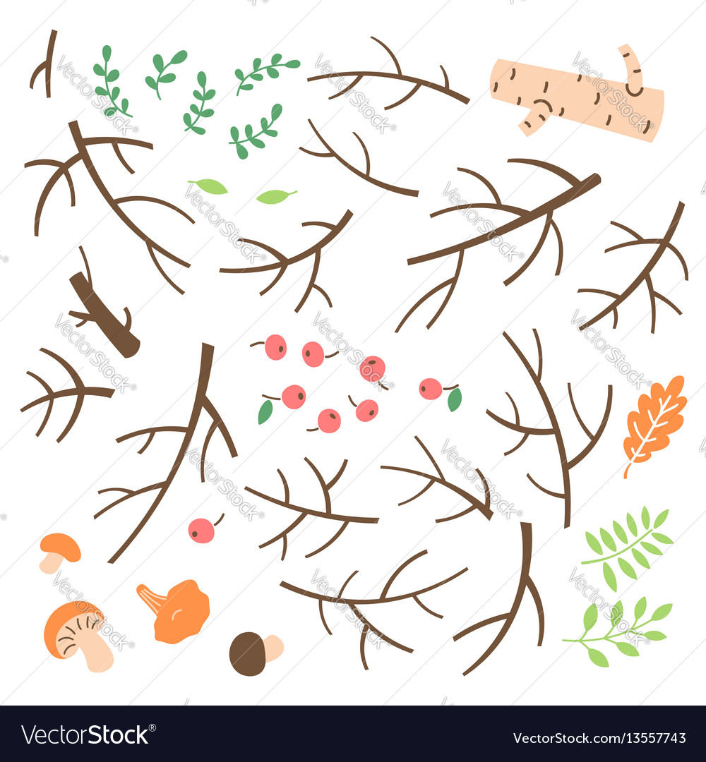 Set of branches twigs sticks drawn in a simple vector image