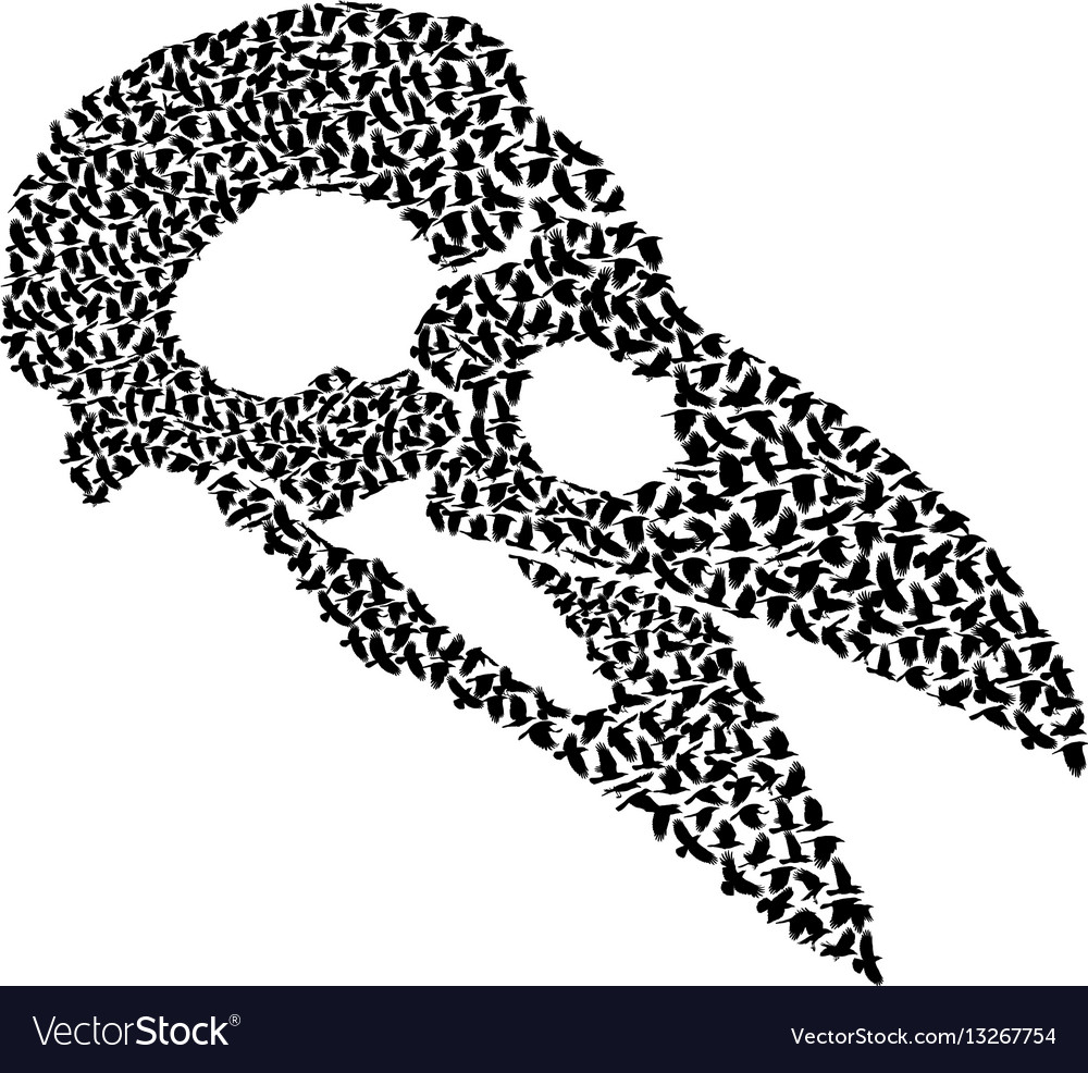 Skull with crows vector image