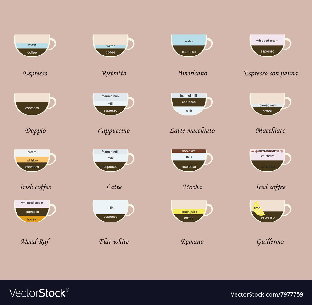 List of coffee drinks vector image