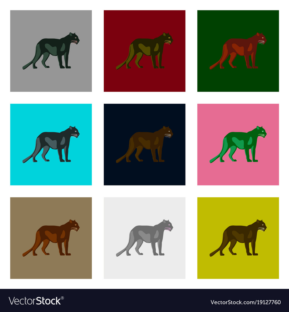 Set of in flat style panthers vector image