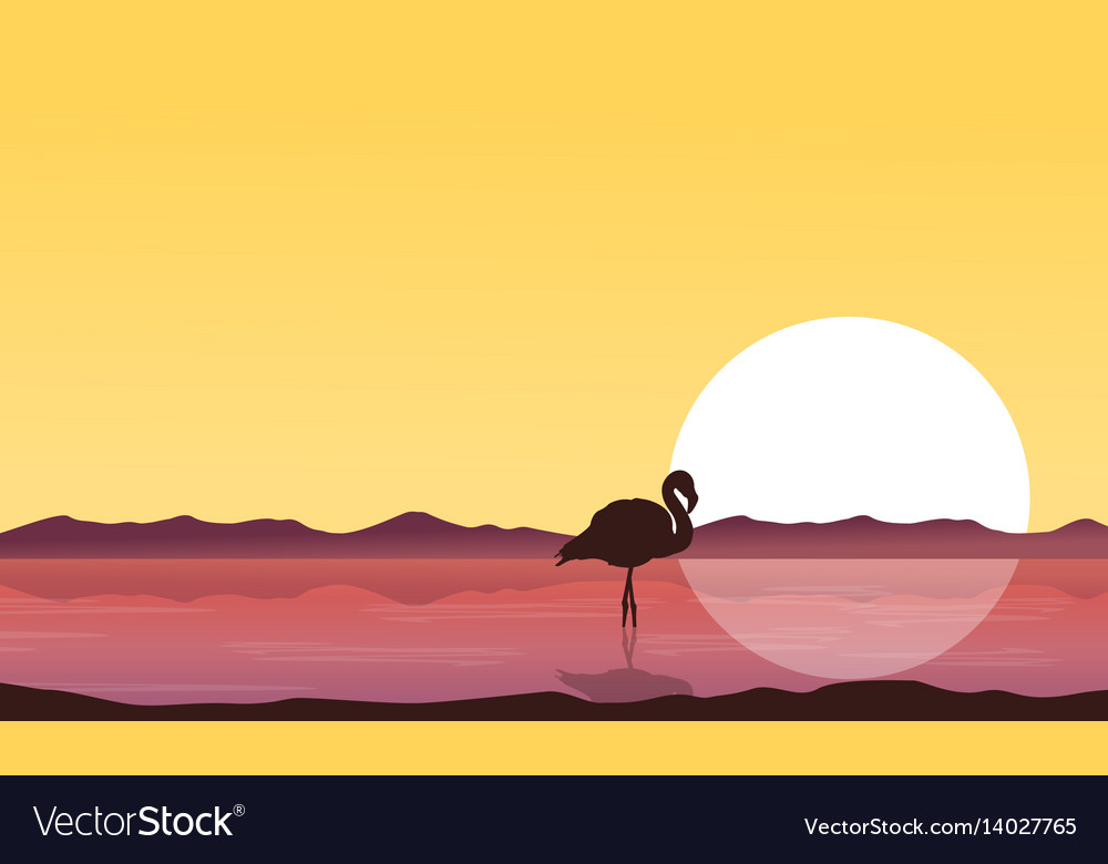 Silhouette flamingo on lake at sunset scenery vector image