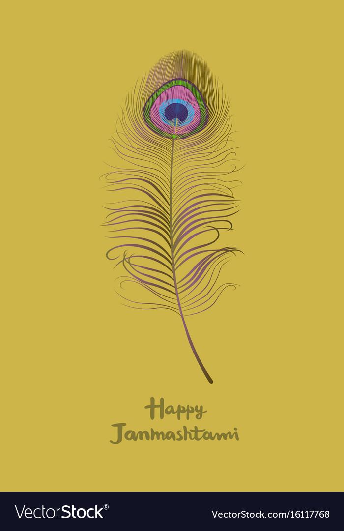 Dahi handi krishna janmashthami card with a peacoc vector image