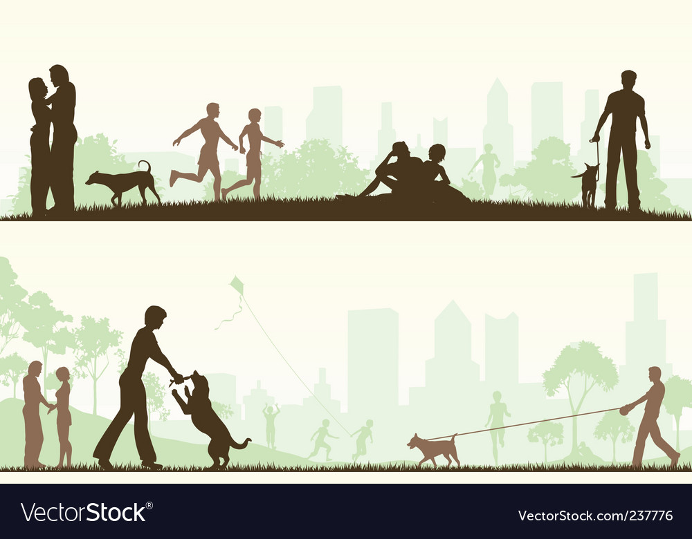 City park designs vector image