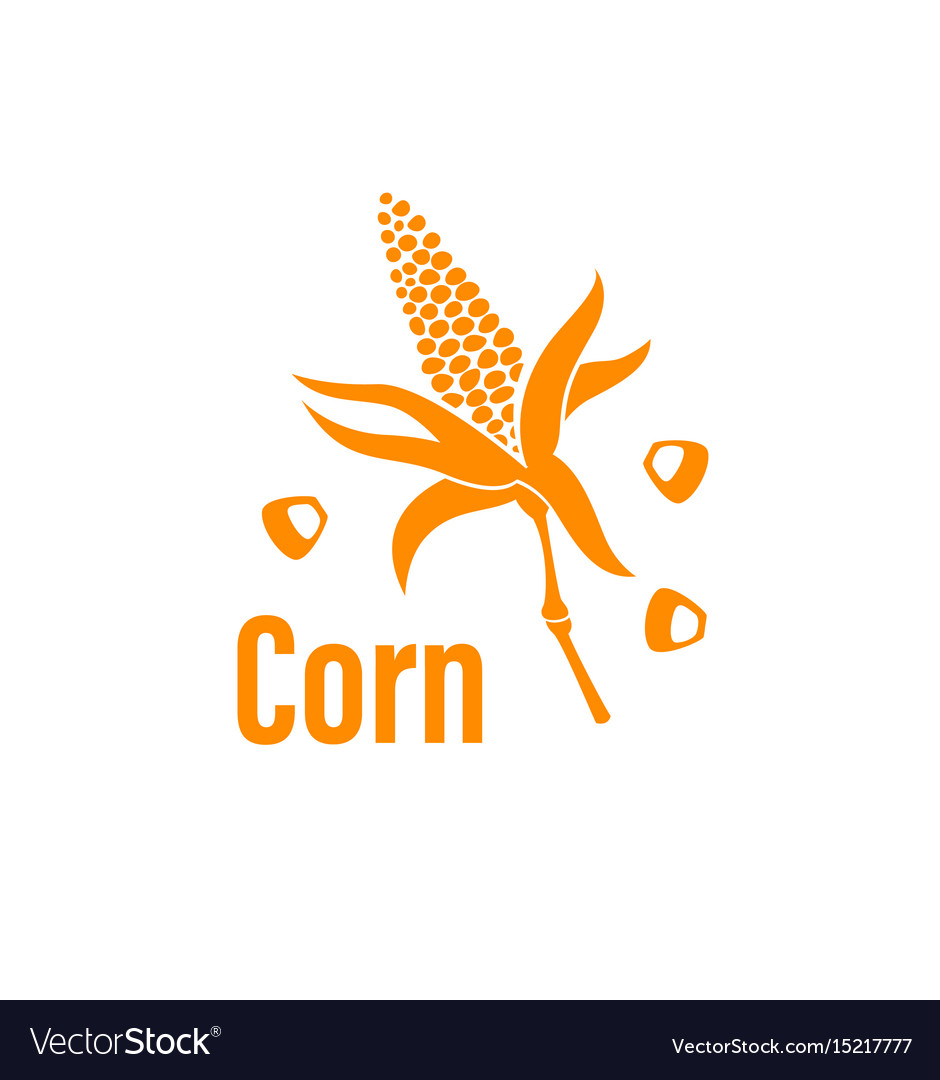 Corn vegetable icon vector image