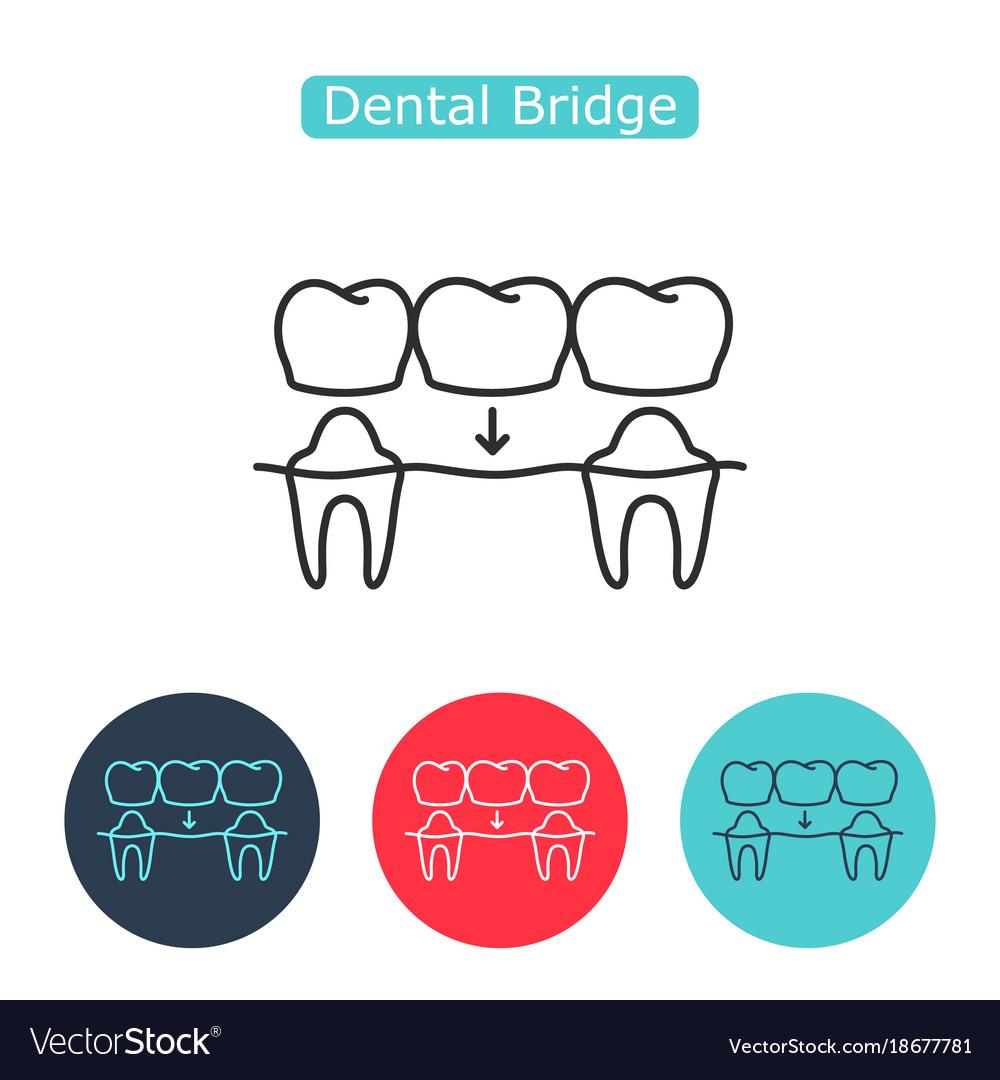 Bridges teeth icon vector image