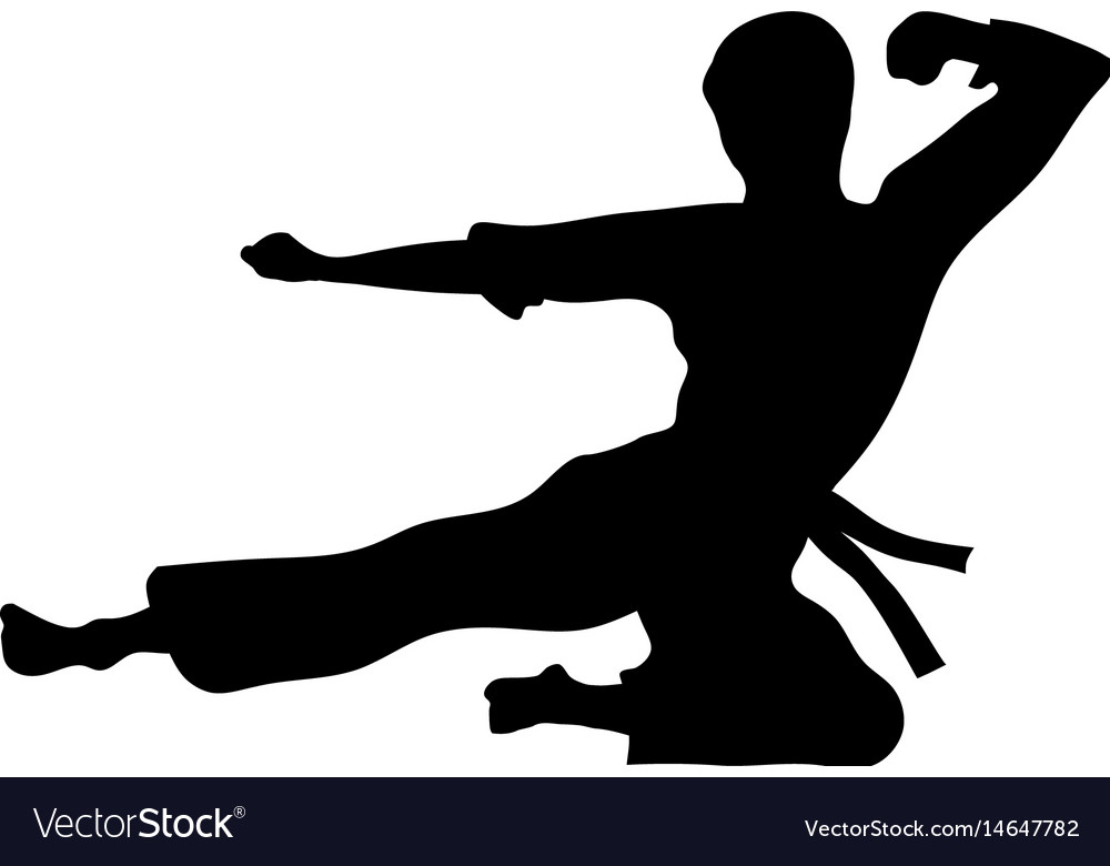Karate sport vector image