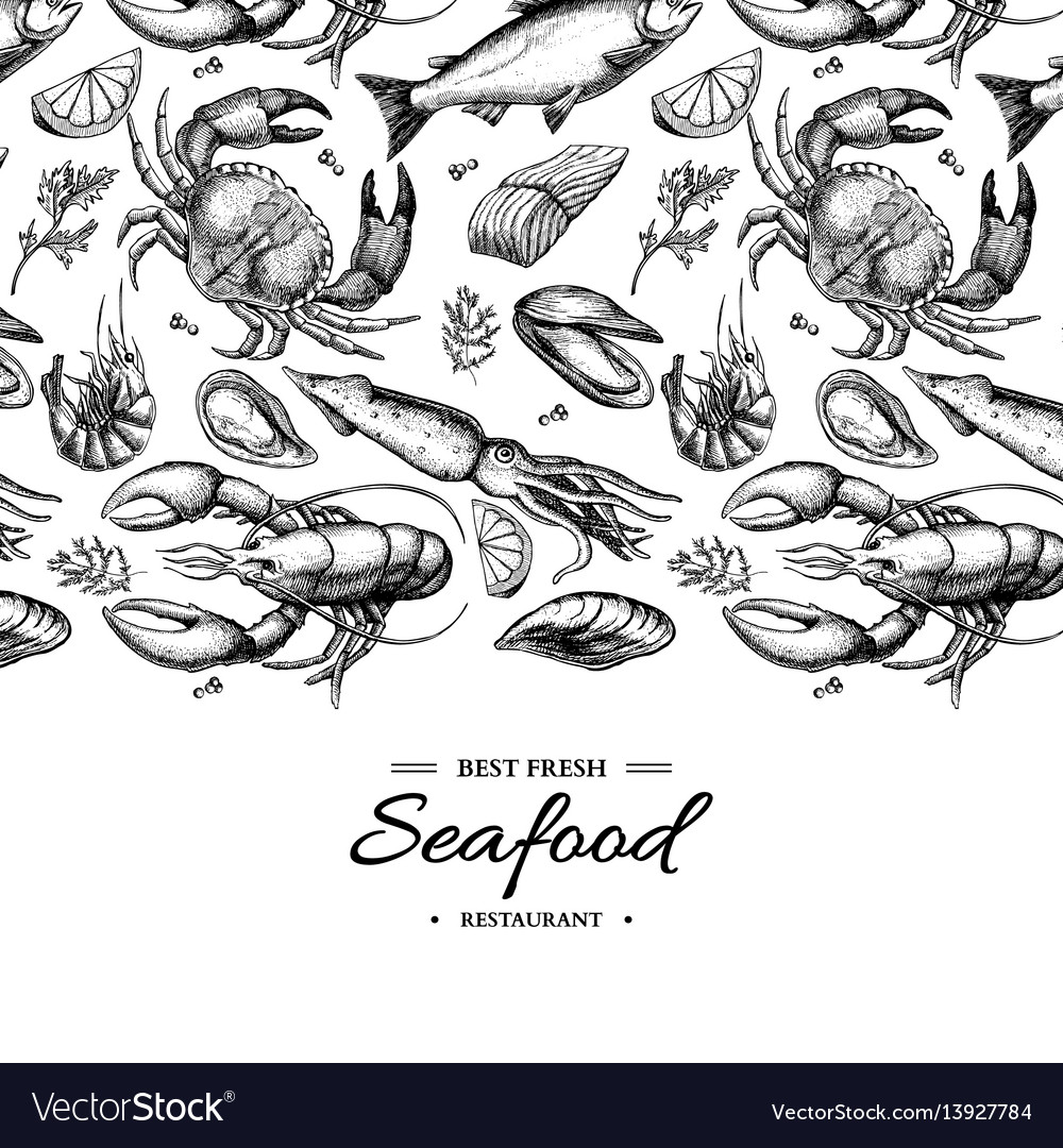 Seafood hand drawn framed vector image