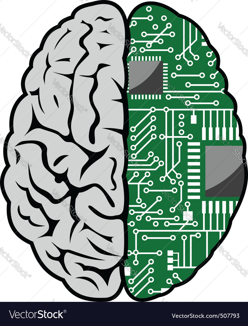 Brain and motherboard vector image