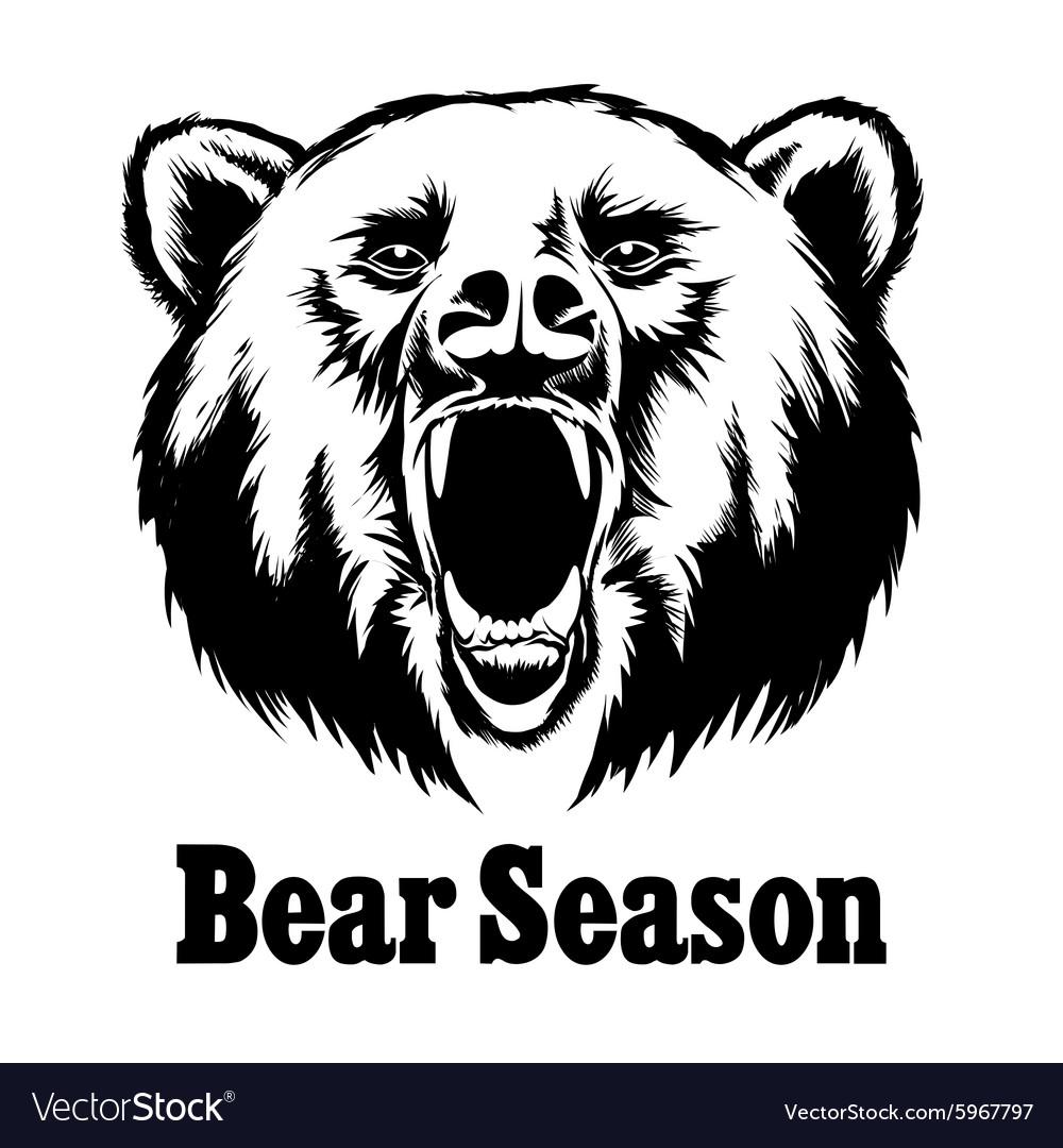 Hand drawn roaring bear T-shirt design vector image