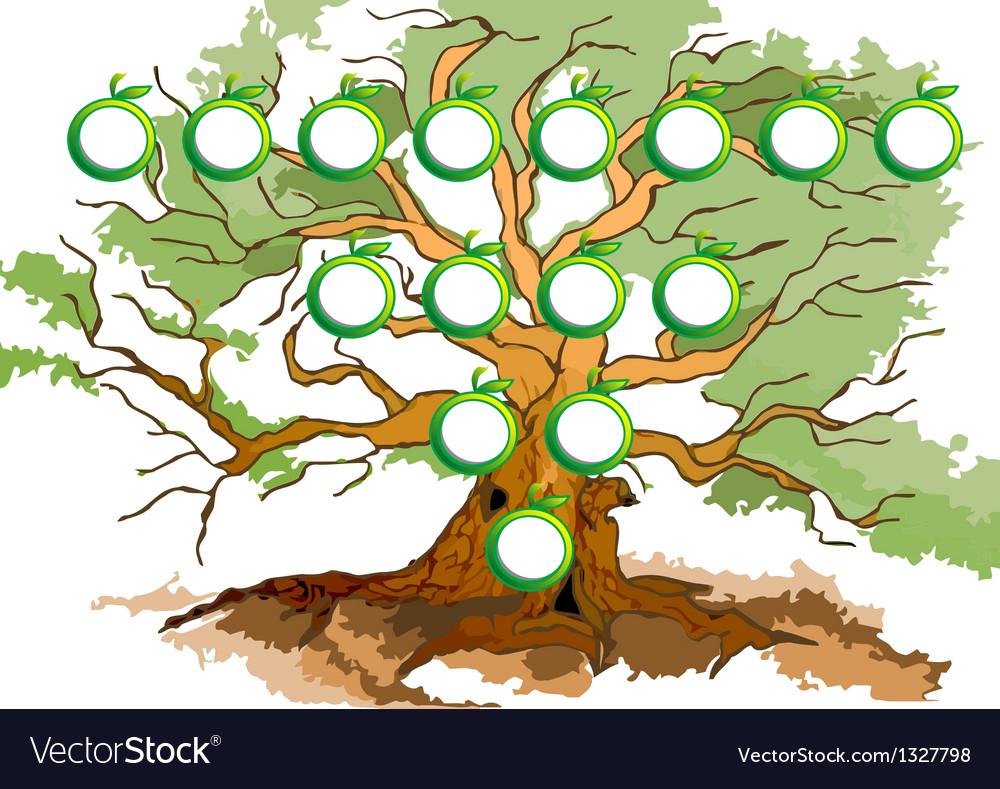 Tree diagram vector image