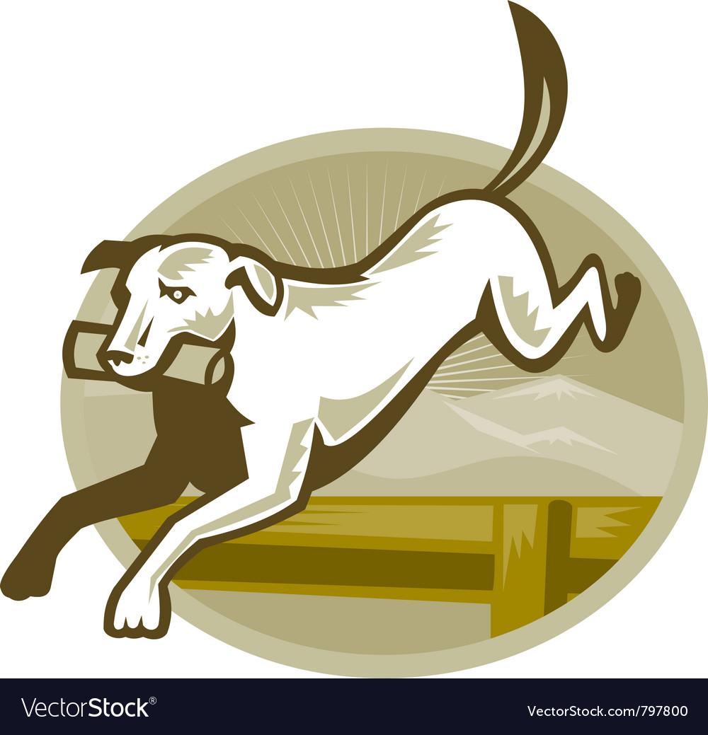 Retriever dog vector image