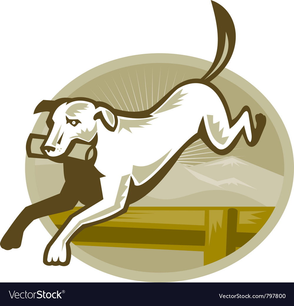 Retriever dog vector image