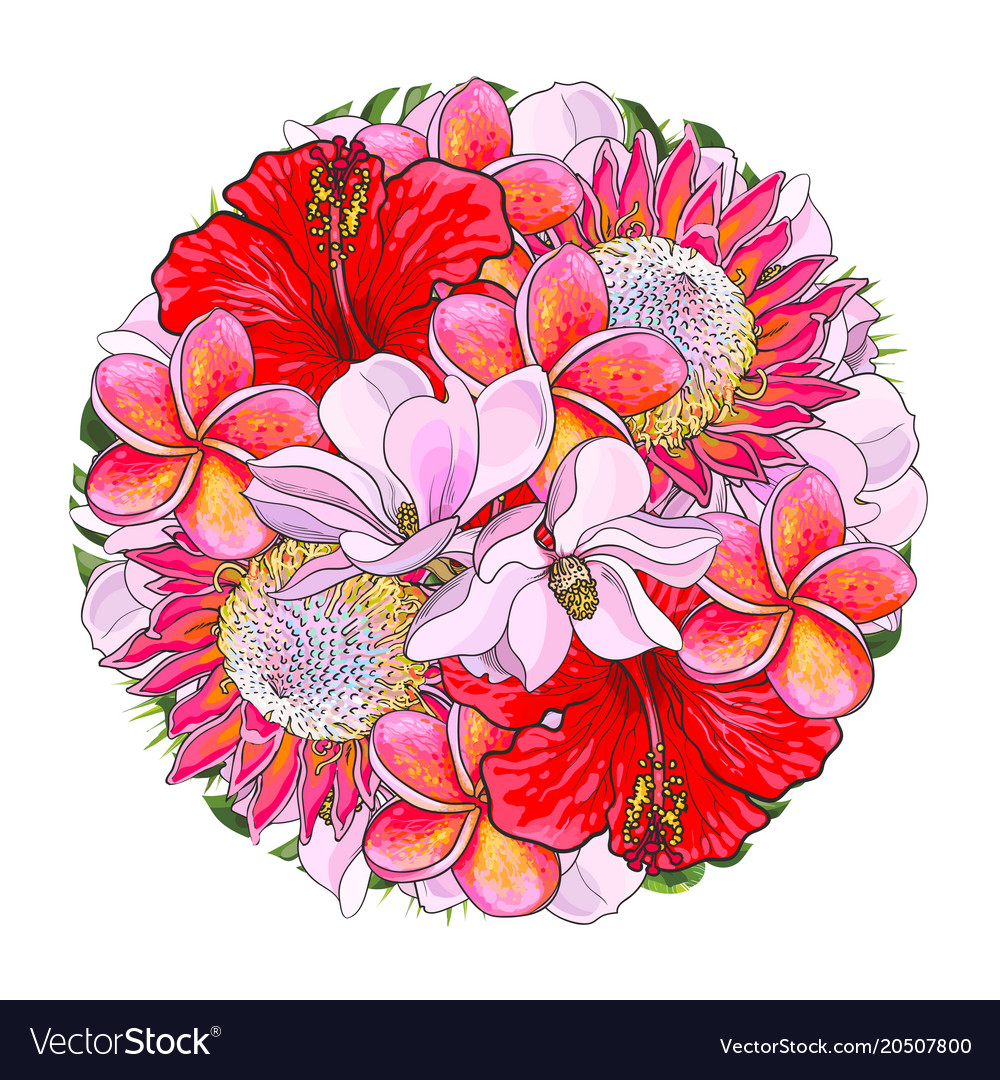 Tropical flowers in bouquet of sphere shape vector image izmirmasajfo Gallery