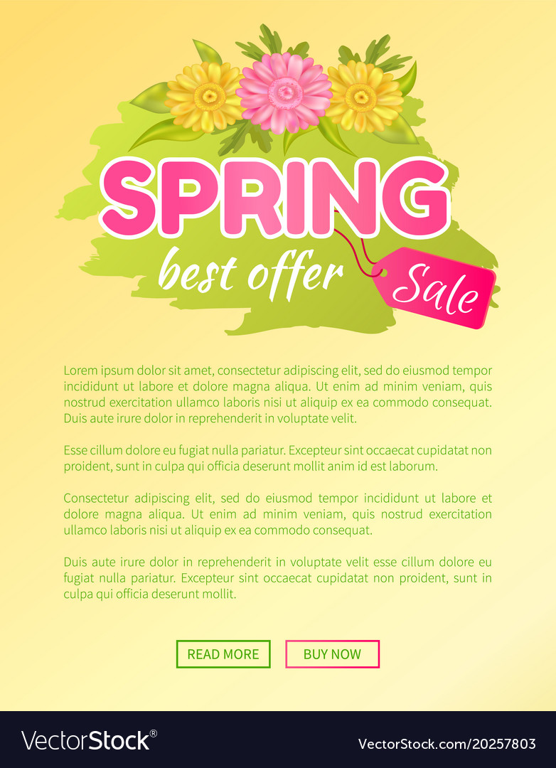 Best offer spring sale advertisement daisy flowers best offer spring sale advertisement daisy flowers vector image izmirmasajfo Images